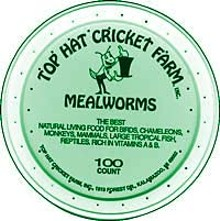 eatersmealwormsjpg