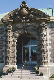 Belle Isle Aquarium has been standing for 110 years