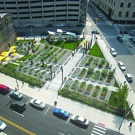Urban Farms and Gardens of Detroit