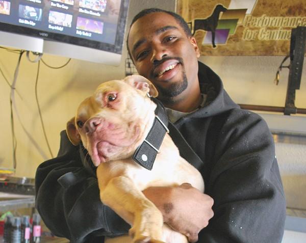 Michael Hodges with his champion pit bull Pow. - PHOTO: DETROITBLOGGER JOHN