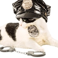 The Troy Police Department is getting a cat