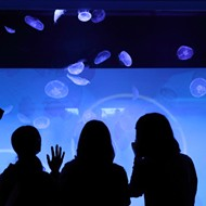 Detroit aquarium idea floated, only to find upstream fight