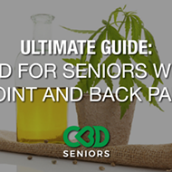 The Ultimate Guide to CBD and Seniors With Joint and Back Pain