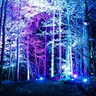 There's a new trippy illuminated forest in Michigan and we want to go to there
