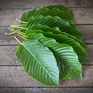 Best Kratom for Pain: Strains, Dosage & Reviews
