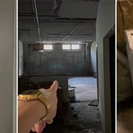 TikTok user goes viral after giving a tour of Detroit apartment building's horror movie-worthy laundry room