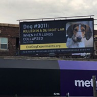 Campaign aims to end decades-long 'painful experiments' on dogs at Detroit's Wayne State University