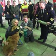 Detroit Fire Department receives 800 pet oxygen masks