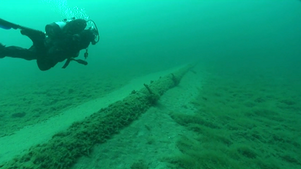 In 2013, the National Wildlife Federation sent divers to look at Enbridge, Inc.'s aging straits pipelines, finding wide spans of unsupported structures encrusted with exotic zebra mussels and quagga mussels. - NATIONAL WILDLIFE FEDERATION