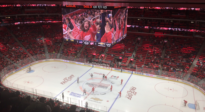 Seats From the Joe Louis Arena Are For Sale