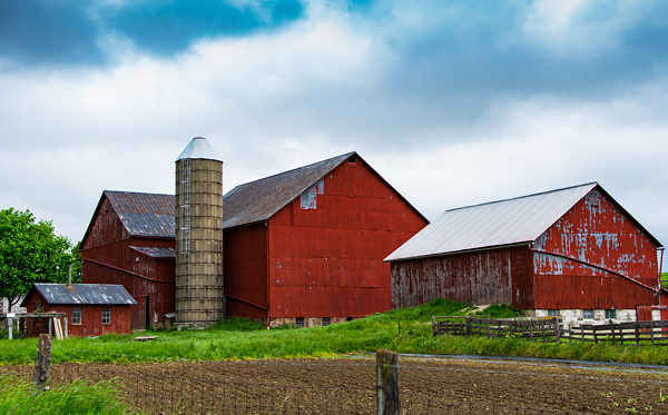 This is a stock image of a barn. To check out the barn that could be heading to Corktown, click the link at the bottom of this page.