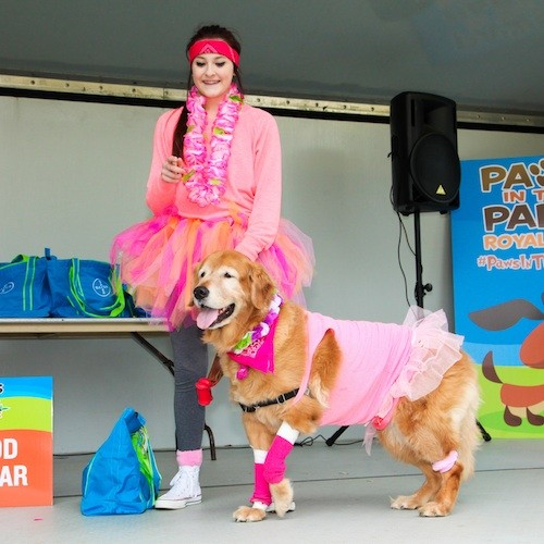 COURTESY PAWS IN THE PARK ROYAL OAK