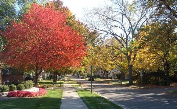 Neighborhood street in Rochester - CITY OF ROCHESTER WEBSITE