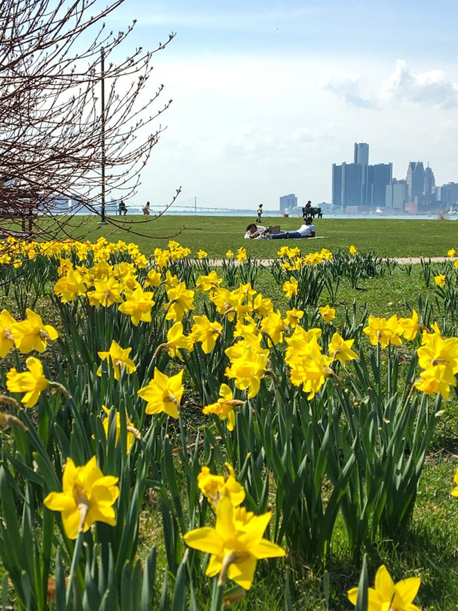 Courtesy of The Belle Isle Conservancy