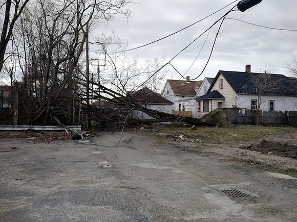 A fallen tree pulled down power lines at Gallagher and Carpenter yesterday, causing a fire. - PHOTO COURTESY STEVEN CHERRY