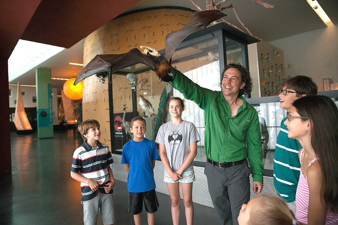 Rob Mies and Kamilah, a Malayan flying Fox, at the Cranbrook Institute of Science. - COURTESY PHOTO