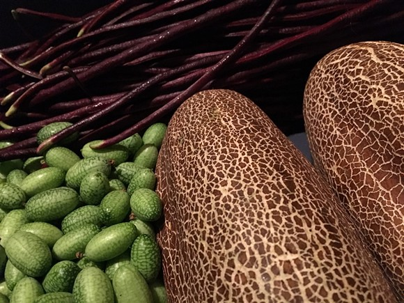 Mexican sour cucumbers, left, and cikkim cucumbers, right. - COURTESY PHOTO
