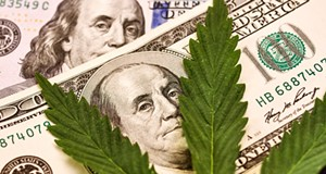 Frankenmuth Credit Union launches new program to service cannabis businesses despite legal grey area