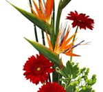 Make It & Take It Workshop: Ikebana Floral Arrangement