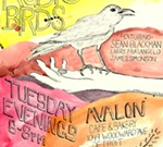 Tuesday Evenings with Audio Birds at Avalon