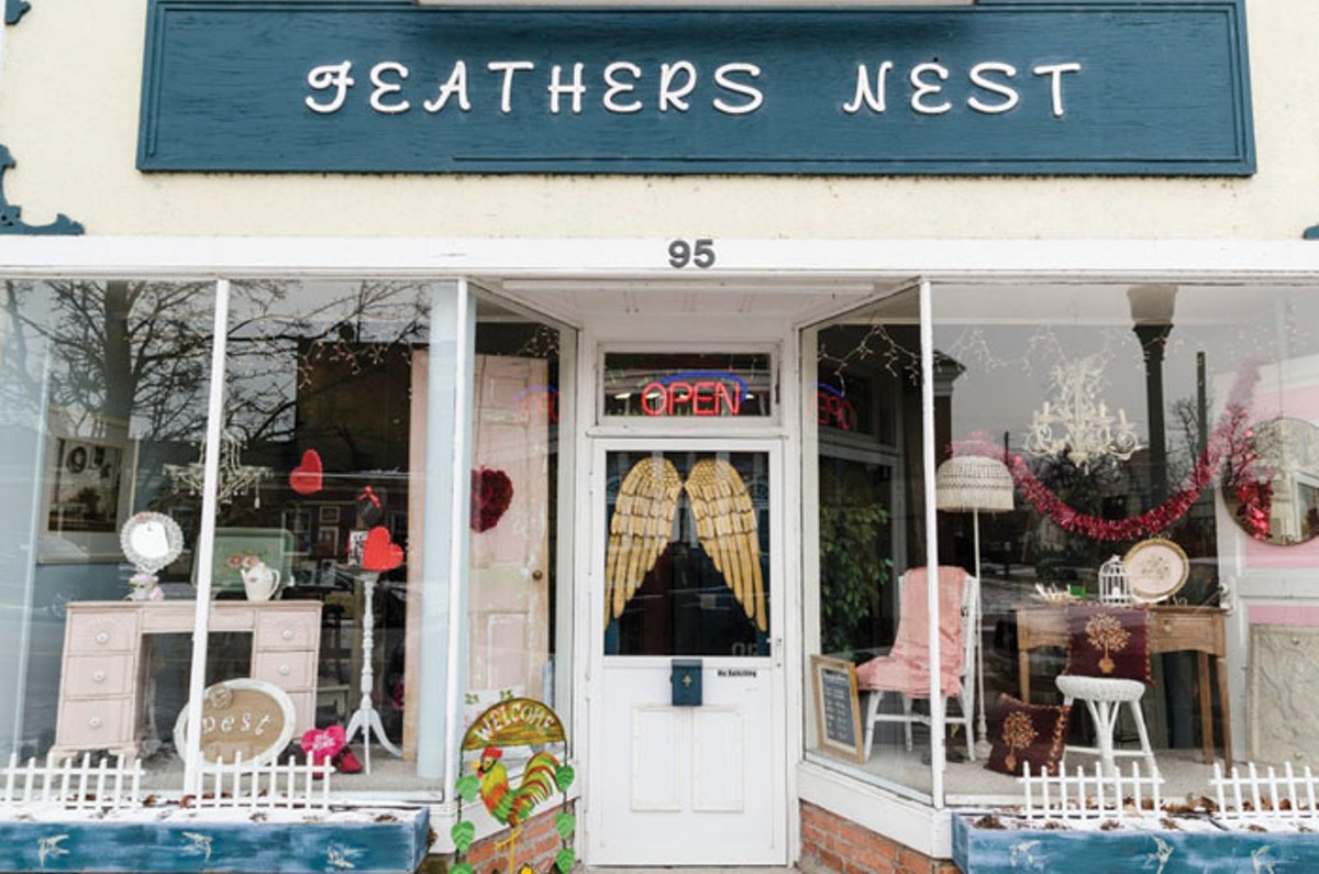feathers_nest_2.jpg