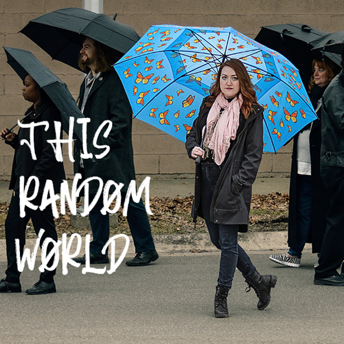 This Random World