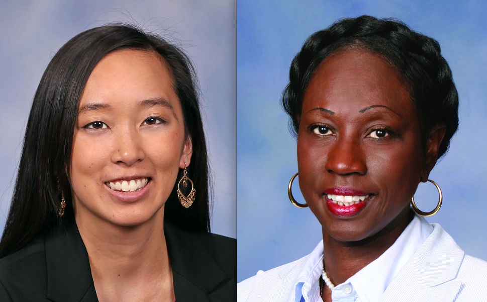 Rep. Stephanie Chang, Rep. Bettie Cook Scott. - MICHIGAN HOUSE