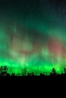 Northern Lights over Benzie County Michigan wooded area.