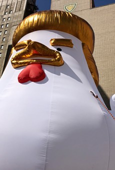An oversized, inflated Donald Trump chicken.