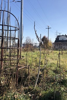 In 2007, inspectors found an alarming amount of lead in the soil at Bridgeview Park in the shadow of the sprawling Marathon Oil refinery in Southwest Detroit.