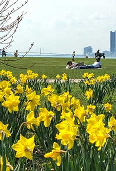If the Detroit Grand Prix leaves Belle Isle, springtime on the island will be quiet and gorgeous again.