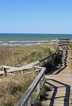 New Buffalo Beach.