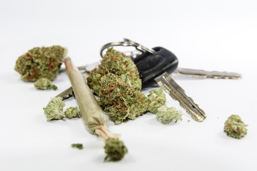 Many Medical Marijuana Users Drive High, Study Shows