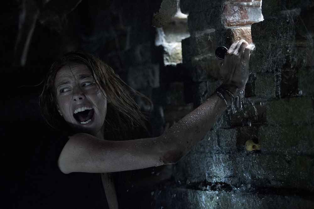 'Crawl' is the alligator slasher flick we didn't know we needed