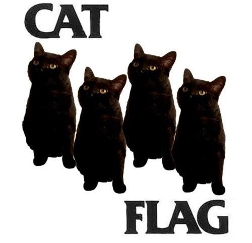 bf-catflag.jpg