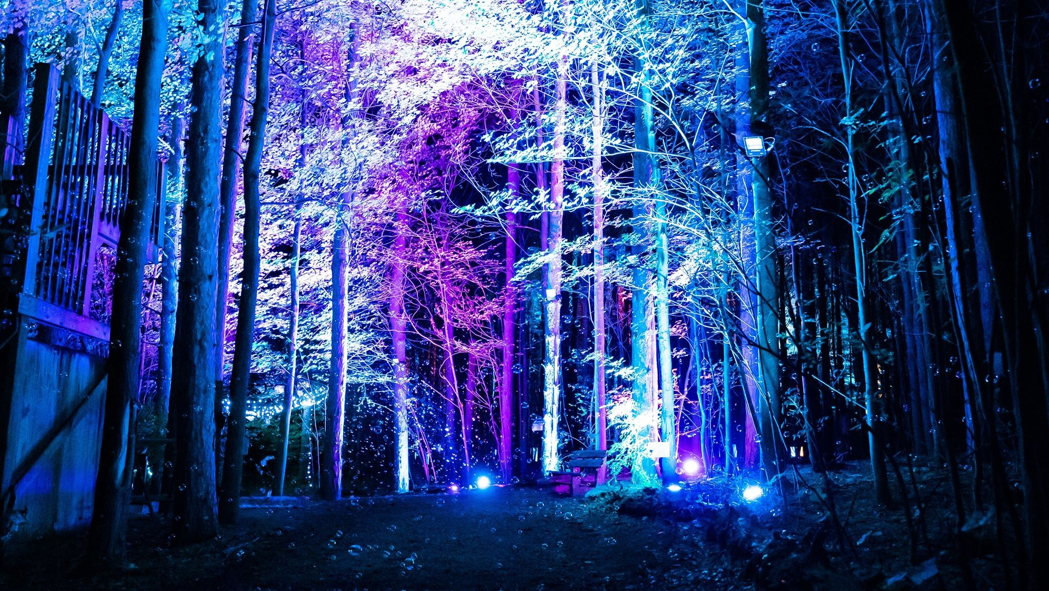 Halloween Art Shows For 2020 In Michigan There's a new trippy illuminated forest in Michigan and we want to