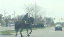 Video of a Detroit horse cop pulling someone over has gone viral