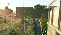 Hamtramck's Hamtown Farms shuts down after it's repeatedly vandalized
