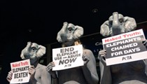 PETA protests the return of UniverSoul Circus in Detroit