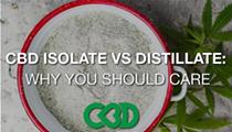CBD Isolate vs CBD Distillate: Why Should You Care