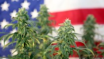 Michigan marijuana dispensaries saw an uptick in weed sales around the election