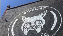 Bobcat Bonnie's owner says government approved, then rescinded coronavirus aid