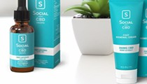 Top CBD Brands to Try – Wide Range of CBD Infused Products
