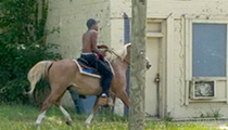 The mysterious horseman of Northwest Detroit spotted again