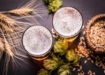 6 ways to celebrate American Craft Beer Week in metro Detroit
