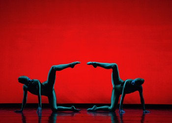Performance art on steroids —