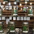 Regulators just cut off a large supply of medical marijuana for Michigan's legal provisioning centers