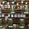 Nipped in the bud: Pot vendors say the state is putting the squeeze on their supply.