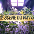 Expunging marijuana convictions would be easy under new Michigan bill