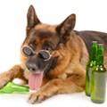 Sip on a few brews with your dog and meet some new friends